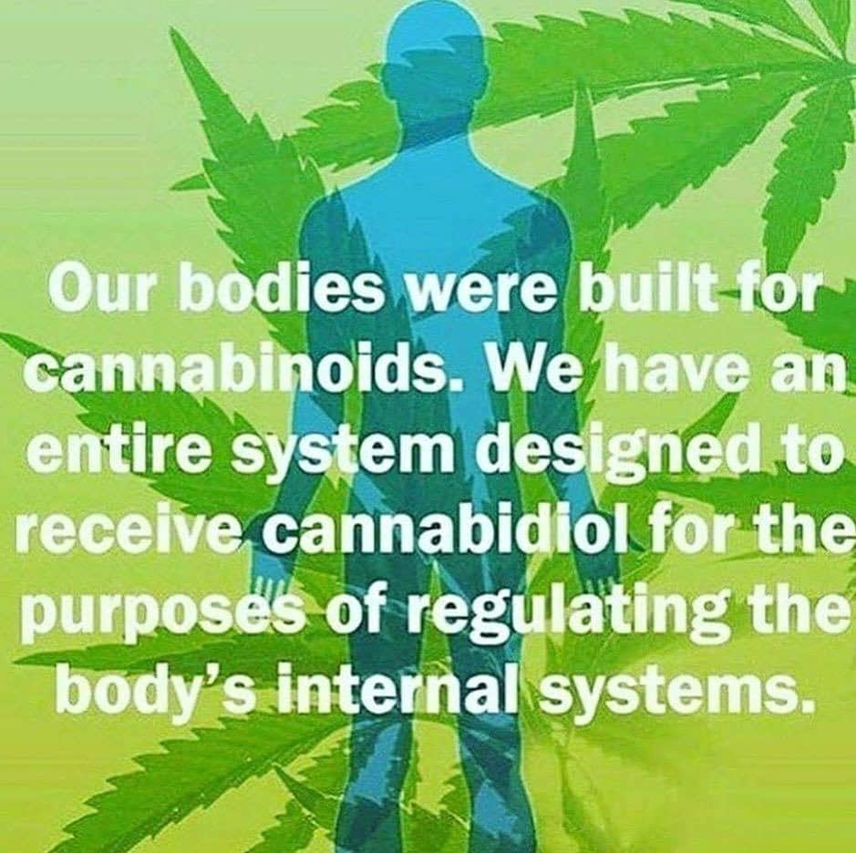 The secret truth about cannabis